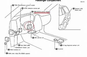 1999 Infiniti G20 Belt Diagram