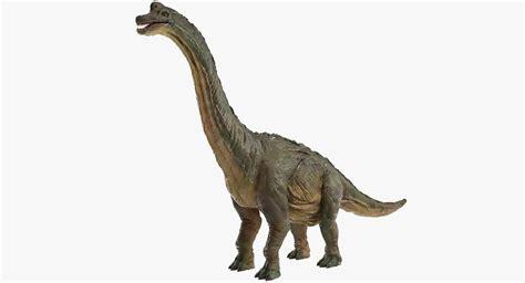 brachiosaurus brachio saurus turbosquid
