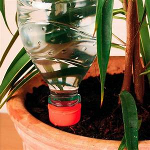 Winterschutz Für Pflanzen Selber Bauen : bew sserungshilfe 6 st ck von g rtner p tschke ~ Whattoseeinmadrid.com Haus und Dekorationen