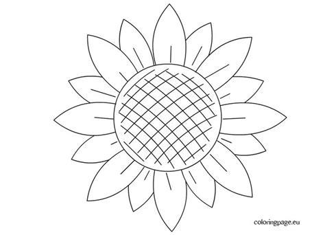 images  slunecnice sunflower  pinterest