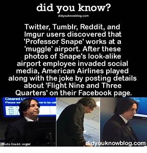 Did You Know? Did Youknowblogcom Twitter Tumblr Reddit and ...