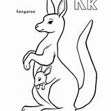 Kangaroo Coloring Carrying Pouch Netart Drawing Animals sketch template