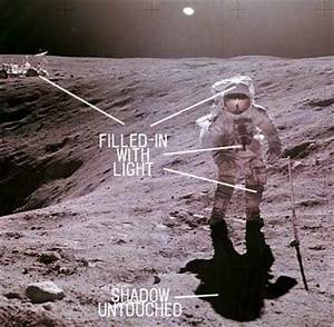 Interesting Facts: Did Neil Armstrong land on moon??
