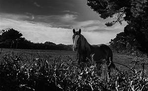 Planisphère Noir Et Blanc : photos noir et blanc paysages monuments vie rurale images insolites instantan s ~ Melissatoandfro.com Idées de Décoration