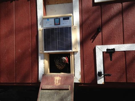 solar chicken coop lights add high tech to the hen house