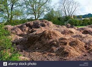 Pilze Auf Komposthaufen : compost farm stockfotos compost farm bilder alamy ~ Lizthompson.info Haus und Dekorationen