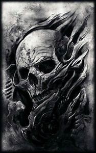 388 best skulls images on Pinterest | Skulls, Skull and ...
