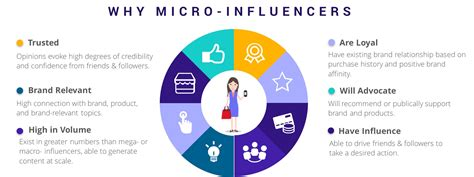 macro influencers influencers marketers