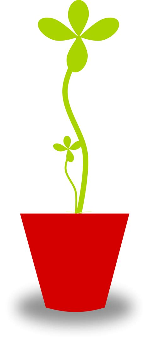 Plant Free Stock Photo Illustration Of A Potted Plant