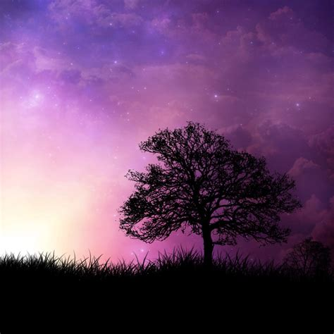 Abstract Wallpaper Nature Background by Abstract Nature Wallpaper Wallpapersafari