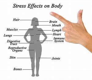 Stress Effects On Body Stock Image  Image Of Hand  Female