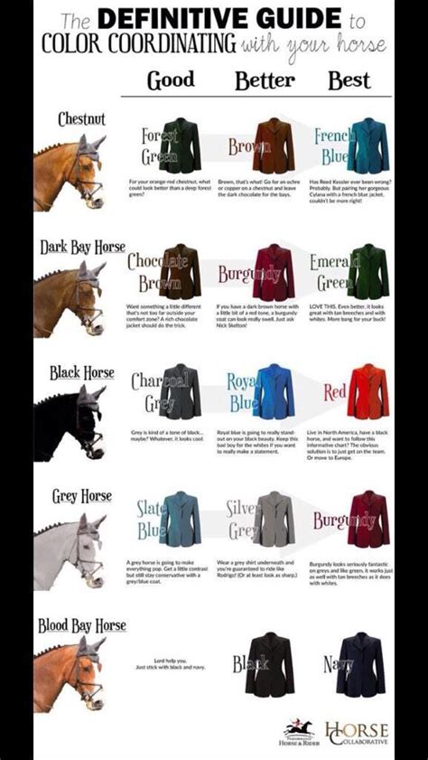 horse chart riding coordination tack horses jacket colored clothes outfits bay looks equestrian wheel western saddles dressage hobby copy visit