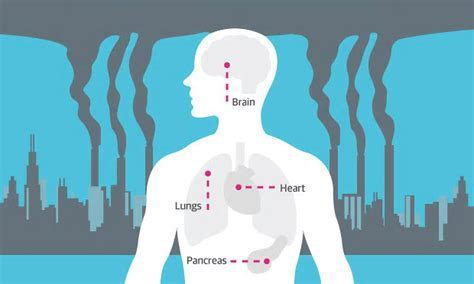 air pollution affects  health infographic ademloos