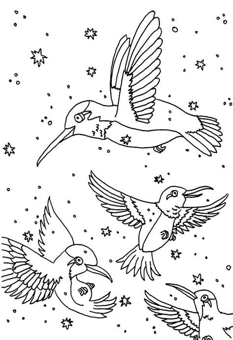 hummingbird coloring pages coloringstar