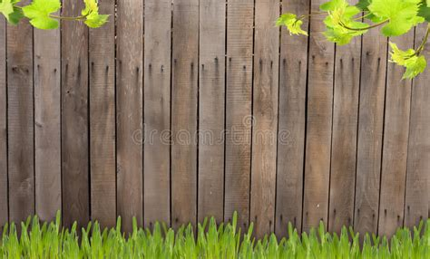 wooden fence stock image image  plank floor