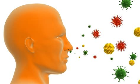 List Of Synonyms And Antonyms Of The Word Allergy