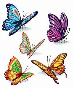 Butterfly Set design Vector | Webbyarts