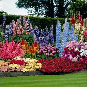 Perennial garden ideas sun native home garden design for Perennial flower garden