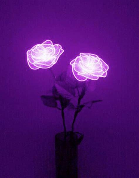 flower light aesthetic blue aesthetic violet
