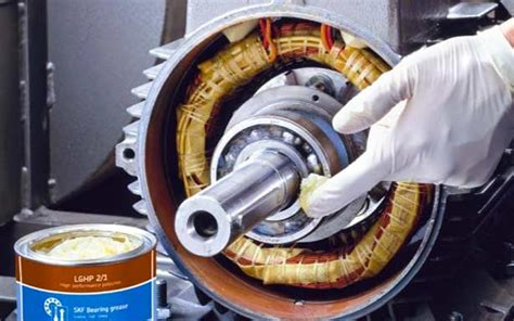 bearing training  maintenance  service root