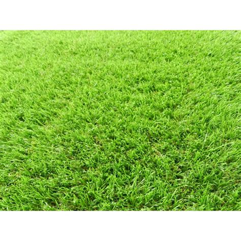 5 ft 6 in x 7 ft 3 in artificial grass synthetic lawn