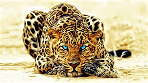 animals  hd tiger wallpaper