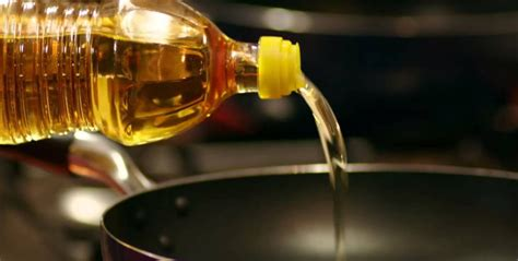 Choose Your Cooking Oil Wisely  Health, Technology, Data