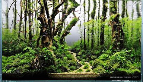 underwater forest planted aquarium aquascaping