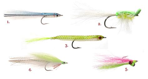 Best Saltwater Fishing Boats For Beginners by Saltwater Fly Fishing Tackle Localbrush Info