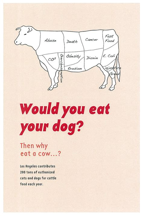 animal rights poster campaign  behance