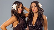 The Bella Twins Wallpapers - Wallpaper Cave