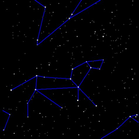 pisces constellations leo wikimedia commons