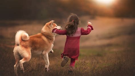 Childrens Animal Wallpaper - children animals shiba inu running wallpapers hd
