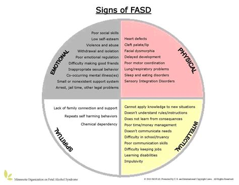 Blending Fasd Information And Native American Culture