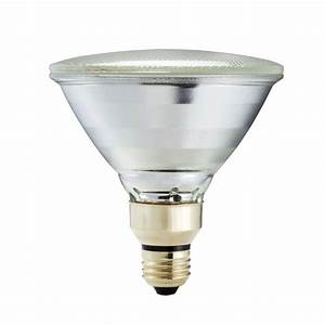 Best long lasting flood light bulbs for speaker