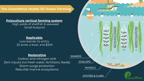 OCEAN FARMING AND THE NEW BLUE-GREEN ECONOMY: AN INTERVIEW ...