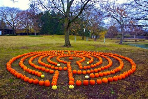 Backyard Labyrinth diy backyard breast cancer healing garden labyrinth ideas