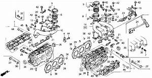 Gl1000 Goldwing Wiring Diagram 1977 Honda