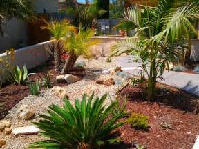 drought tolerant landscape design idea with palms agave