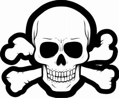 Skull Pirate Sticker Stickers Designs