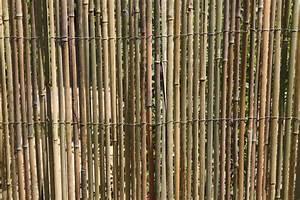 2 X 2 M Matratze : bambusmatte 2m x 1 5m bambus sichtschutzmatte zaun sichtschutz matte geschnitten ~ Markanthonyermac.com Haus und Dekorationen