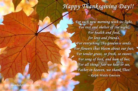 thanksgiving quote pictures photos and images for and