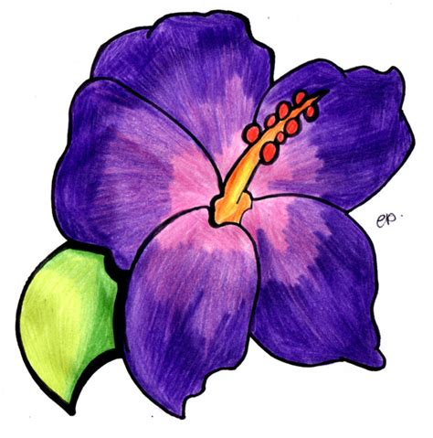 how to draw a purple flower purple flower drawing clipart best
