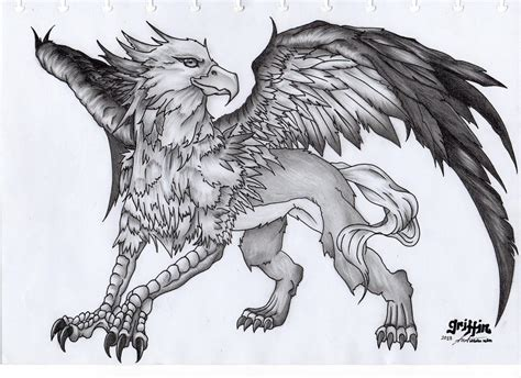 Say I Love You Anime Wallpaper Griffin The Mythical Creature By Starz8zstar On Deviantart