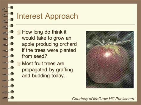 how does it take a tree to grow horticultural science horticulture cd ppt download