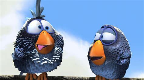 Animated Bird Wallpaper - galer 237 a de im 225 genes fondos 3d de p 225 jaros