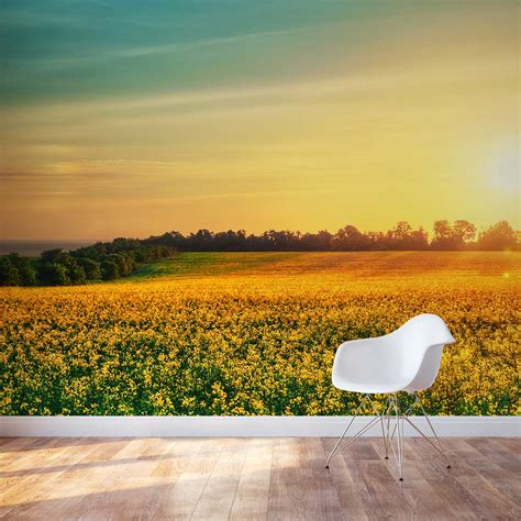 flower field  sunset wall mural