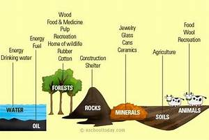 What Are Some Examples Of Natural Resources And Human