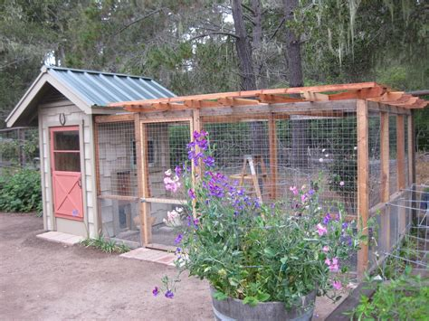Coop Guide Organizer Chicken Coop For Garden