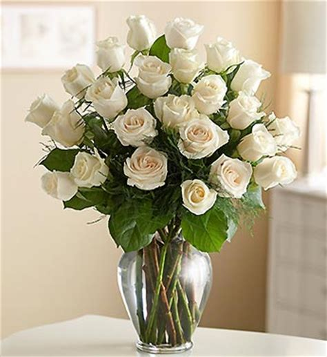 Beautiful White Roses in Vase